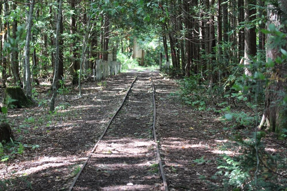 ふるさとの物語 第32回「薬研渓流の遊歩道」~森林鉄道の跡を活用~
