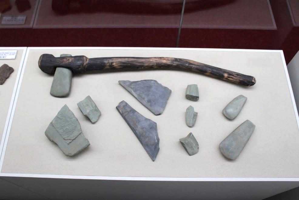 ふるさとの物語 第186回 緑色岩製磨製石斧    ~北海道から渡った貴重品~